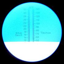 Blick durch das Okular eines Handrefraktometers. Ablesewert: 47 °Oechsle.