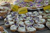 Viola tricolor - Wildes Stiefmütterchen