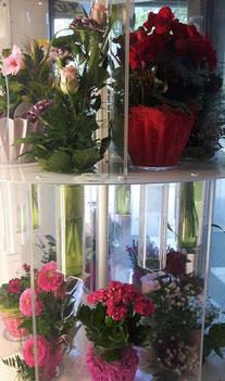 Der Blumenautomat bei Blumen Grünschnabel in Trossingen