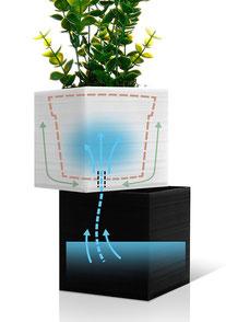 ©Capillo Cube, système d'irrigation autonome