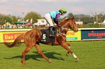 Renn-Pferd beim Auf-Galopp
