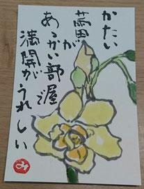 53 房咲き水仙