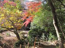玉堂邸の庭園