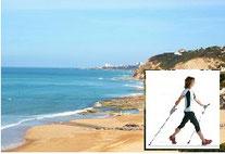 Plages Biarritz-Bidart à marée basse