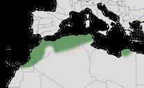 Karte zur Verbreitung der Kanarenmeise