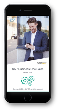 SAP Business One sales application uniquement SAP HANA