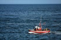 Pêches et Océans