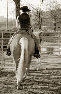 Fine Horsemanship by Barbara Wagner