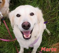 Marta (Berchida) - geb. 01/2014