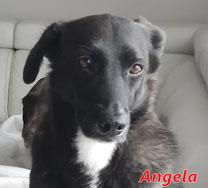 Angela - geb. 01/2015