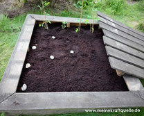 Sandkasten umfunktionieren, Sandkasten zum Blumenbeet, Kraftquelle