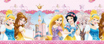 Dinsey Princess