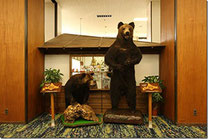 十勝川温泉 笹井ホテル [音更町]2