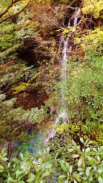 付知狭不動渓谷観音の滝。中津川の里山の美しい紅葉真っ盛り中津川付知峡周辺食事処散策散策