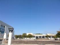 会場建物より見る青空