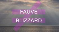 musique Fauve Blizzard