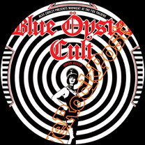 blue oyster cult, richie castellano, kasim sulton, jules randino, hard rock, the reaper, godzilla