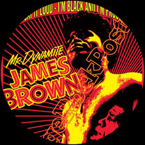 james brown, soul, blues, black music, funky, living in america, the blues brothers, i got you