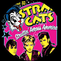 stray cats poster, rockabilly