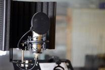 Ringo Studios Mikrofon K2