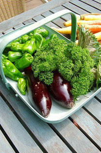 Aさんの家庭菜園で採れた野菜