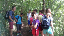 Balades nature avec classes vertes et camps de vacances