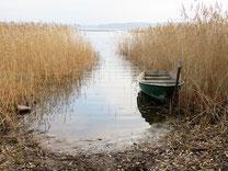 Участки у Комсомольского озера, Торфяное