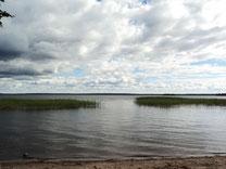 Плвартира на берегу озера Отрадное Плодовое
