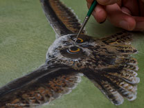 Details herausarbeiten, Eule, Acrylmalerei von Thomas Guggemos