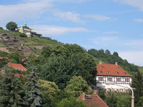 Weinberge Radebeul