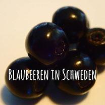 Blogpost: Blaubeeren auf schwedenundso.de
