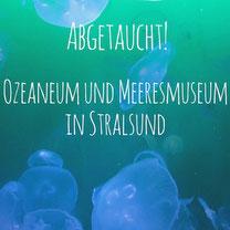 Blogpost: Abgetaucht! Ozeaneum und Meeresmuseum in Stralsund auf schwedenundso.de