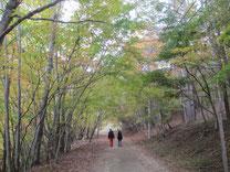 Photo of Nishizawa Valley 4