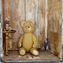 shabby teddybär