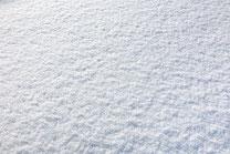 日本 北海道 札幌 ふわふわ雪のテクスチャ