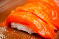 日本 北海道 札幌 寿司 サーモン