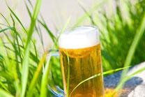 緑とビール3