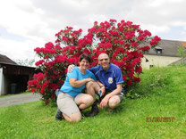 WT Pressath: Rhododendron Riggau