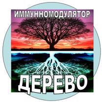 """Метафора """"ДЕРЕВО"""""""