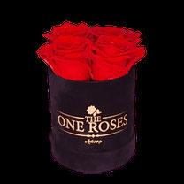FLOWERBOX ROND LARGE - BLAUW €149,99
