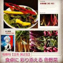 田辺弁慶映画祭 出店販売 彩菜実麗 色野菜 和×夢 nagomu farm