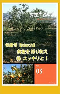 旬感句【弥生 其之壱】 黄橙を 採り終え 緑 スッキリと!