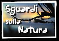 Sguardi sulla Natura