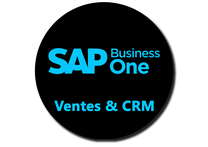 SAP Recognized Expertise , Master VAR France