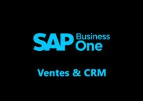 SAP Recognized Expertise , Master VAR France