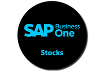 100% Dédié à SAP Business One