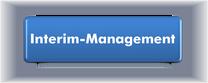ergänzende Informationen zu Interim-Management