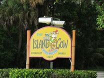 "Restaurant ""Island Cow"""