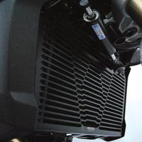 Radiator protector BMW F800R