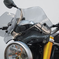 Windshields BMW R NINE T